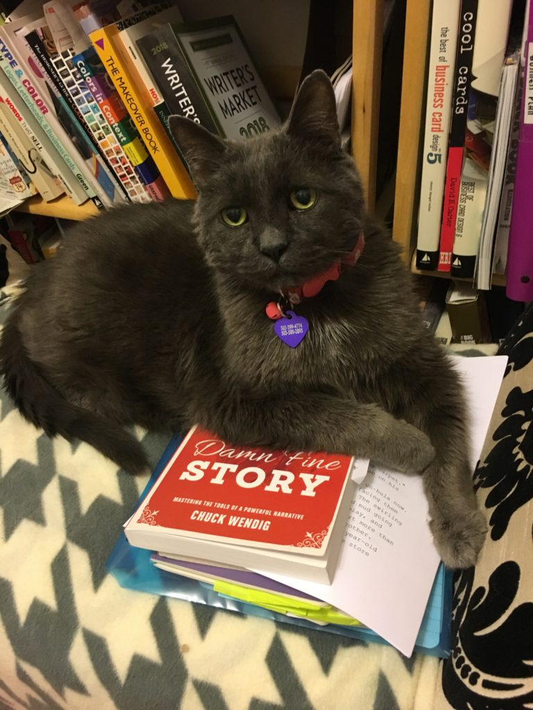photo of cat on top of writing books